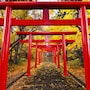 Stay SAKURA Kyoto Nijo Castle West I photo 26/26