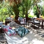 Lemon Garden Hotel Turkbuku photo 32/34