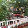 Kathmandu Boutique Hotel photo 4/41