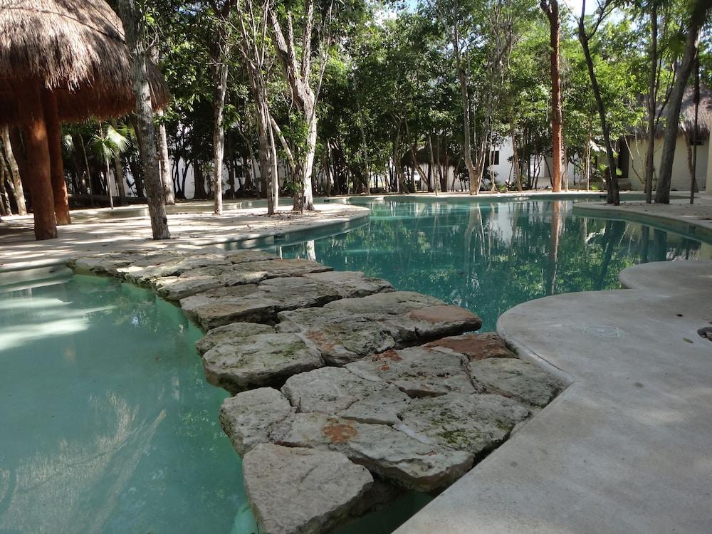 Tropical Paradise Apartment