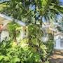 Mango Haus Vacation Home