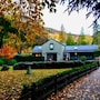 Shades of Arrowtown photo 34/41