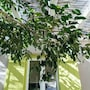 Cozy 2-bedroom House in Tinos photo 4/26