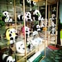 Panda Price Selected Hotel Chengdu Xinhua Park Branch photo 6/30