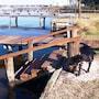 Salty Dog #1031569 - 4 Br Home photo 4/26