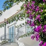 Hotel Villa Franca photo 5/41