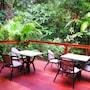 Daintree Rainforest Retreat photo 6/36