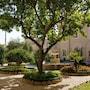 VOI Donna Camilla Savelli Hotel photo 9/41
