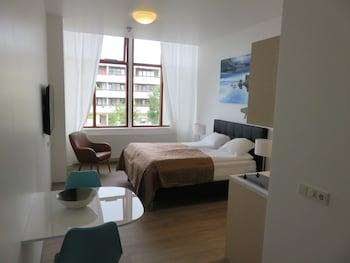 冰島舒適公寓飯店