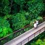 Nayara Resort Spa & Gardens photo 34/41