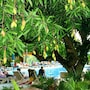 Nadi Bay Resort Hotel photo 34/41