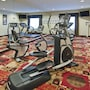 Holiday Inn Express Hotel & Suites Lafayette South photo 15/28