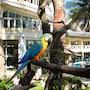 Paradise Bay Beach Resort Boracay photo 20/41