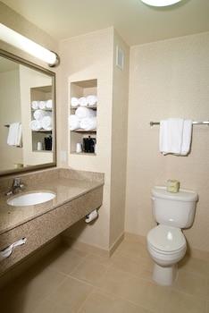 Holiday Inn Express Hotel & Suites Twin Falls - Bathroom  - #0