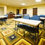 Holiday Inn Express & Suites Childress photo 20/22