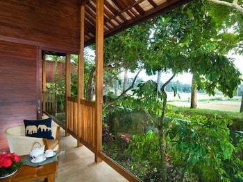 Elephant Safari Park Lodge - Guestroom  - #0