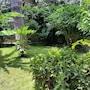 Il Giardino di Giulia 2 photo 6/34
