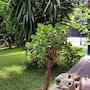 Il Giardino di Giulia 2 photo 12/34