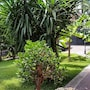 Il Giardino di Giulia 2 photo 33/34