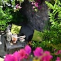 Villa Taormina photo 8/41