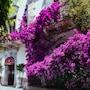 Villa Taormina photo 20/41