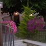 I Tre Rioni photo 20/20