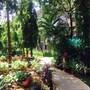 Kyriad Prestige Calangute Goa photo 3/41