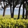 Villaggio Turistico Lugana Marina photo 18/41