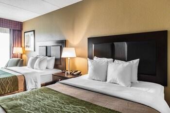 Comfort Inn Warner Robbins - Guestroom  - #0