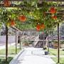 Best Western Suites Le Jardin Caldas Novas photo 9/41