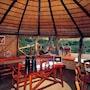 Umlani Bushcamp - Lodge photo 4/31