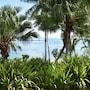 Sinalei Reef Resort & Spa photo 8/41
