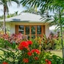 Sinalei Reef Resort & Spa photo 41/41