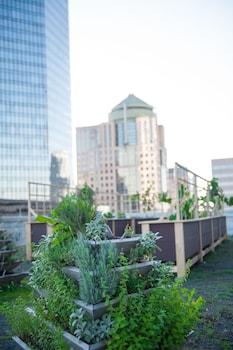 The Ritz-Carlton, Charlotte - Miscellaneous  - #0