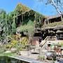 Phu Chaisai Mountain Resort photo 21/41