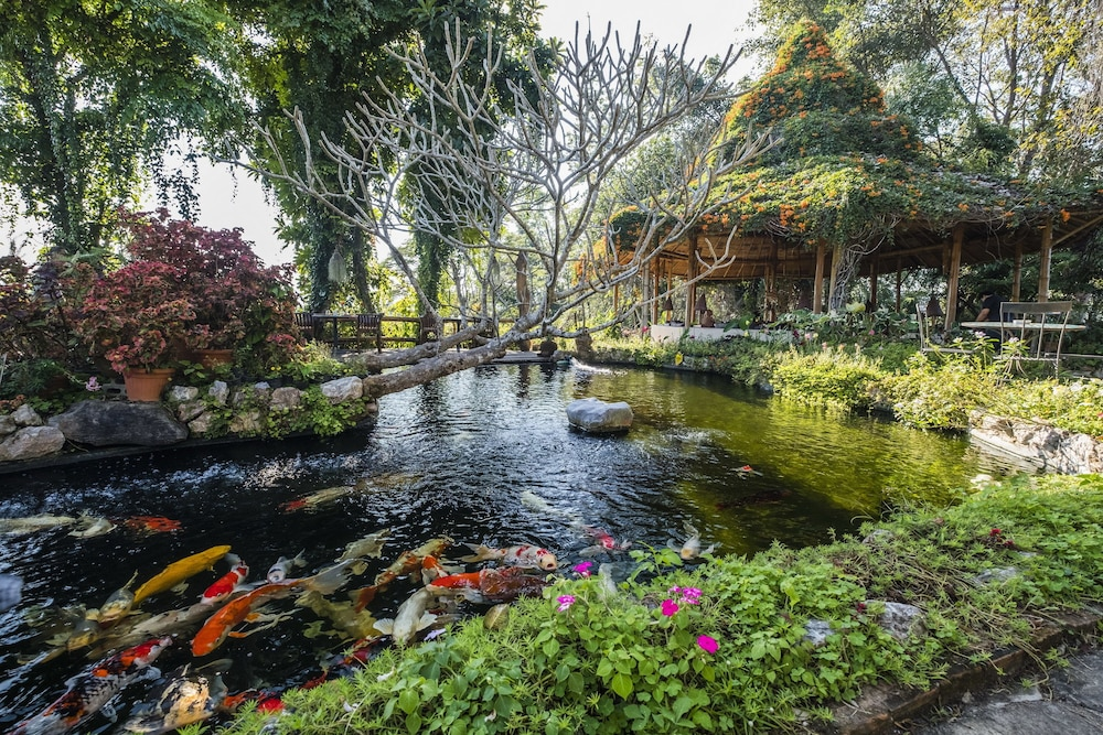 Phu Chaisai Mountain Resort