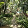 Golden Pine Beach Resort & Spa photo 8/41