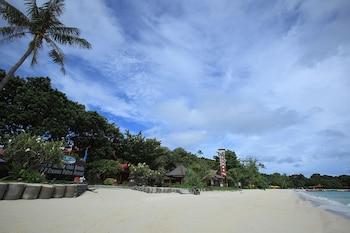 愛侶灣棕櫚渡假村