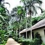 Nai Yang Beach Resort & Spa photo 6/41