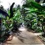 Nai Yang Beach Resort & Spa photo 11/41