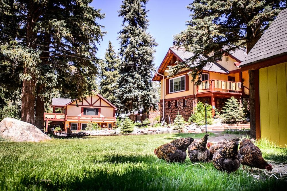 Alpen Way Chalet Mountain Lodge