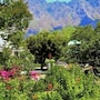 Auberge Alouette Guesthouse photo 8/28