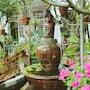 T'Garden Homestay photo 16/41