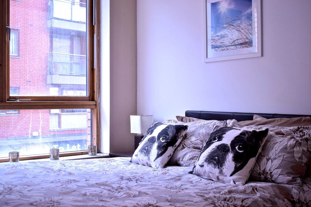 1 Bedroom Flat in Dublin With Balcony