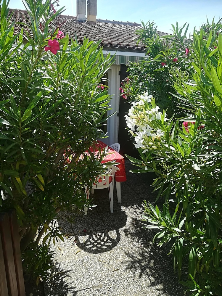 House With 2 Bedrooms in Le Grau-du-roi, With Enclosed Garden
