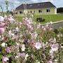 Tullaleagan Guesthouse photo 6/21