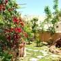 Bedouin Garden House photo 4/18