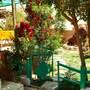 Bedouin Garden House photo 14/18