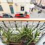 Spacious & Modern Flat in the Heart of Lisbon photo 3/26