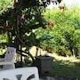 Gite des Acacias photo 8/10